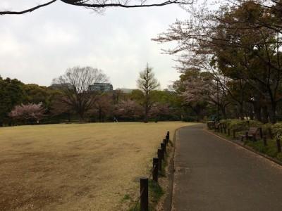 Chiyoda Park Tokto