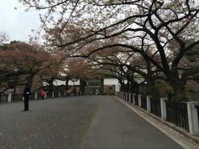 Gerbang Chiyoda Park Tokyo Jepang
