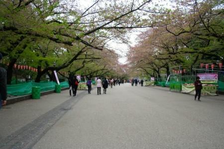 Taman Indah di Jepang Ueno Park