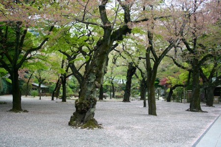 Tempat harus dikunjungi di Tokyo
