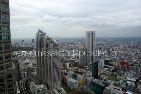Hari Ketiga di Tokyo - Edisi Liburan di Jepang Day 3