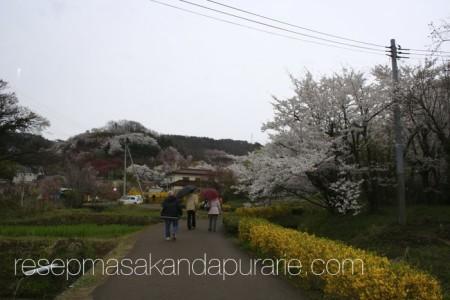 Jalan-jalan ke Jepang