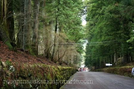 Liburan ke Nikko World Heritage