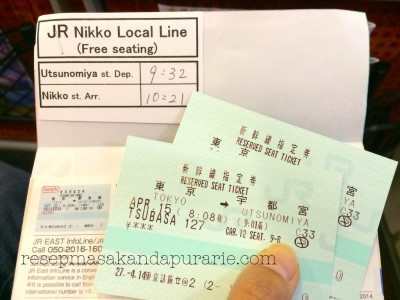Shinkansen Ticket - Nikko Trip by Train